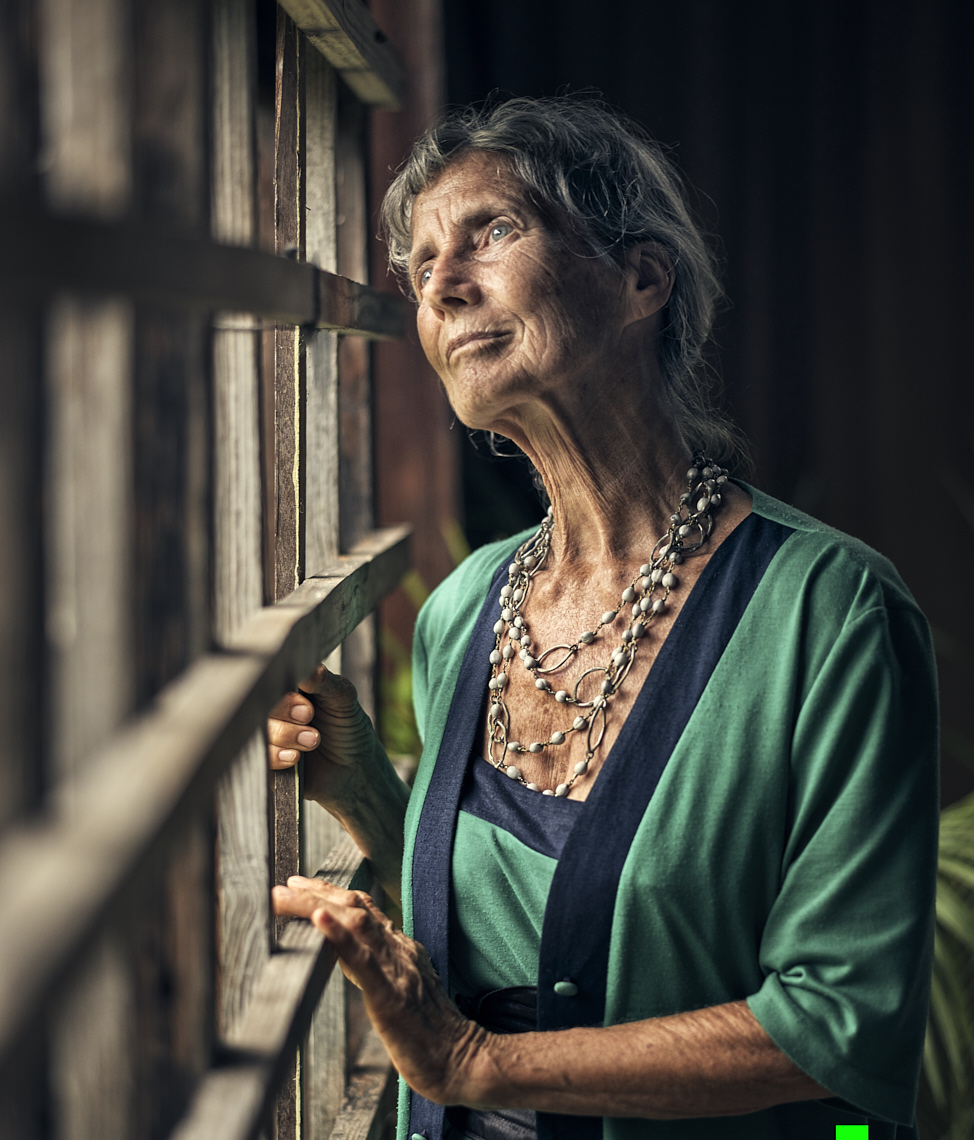 Kevin Steele - portrait of an older woman looking out the window