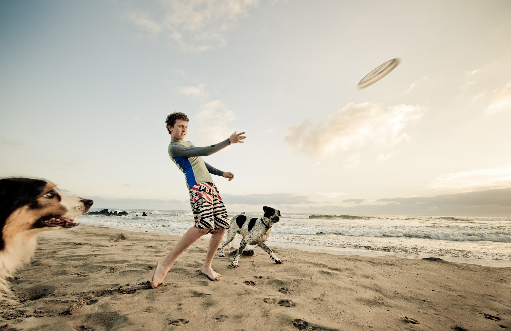 Kevin Steele - A boy throwing a frisbee on a beach with dogs